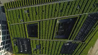 Kö Bogen II - Europe's largest green facade