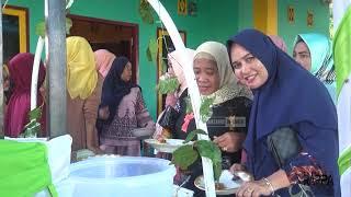 Download Hadirmu Bagai  Mimpi - Rhini LIVE Acara Khitanan Jln Pinang Raya Desa Rappoa Kab Bantaeng