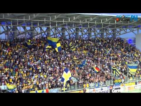 *SportonlinePH* Lupii galbeni în tribune Dinamo Zagreb