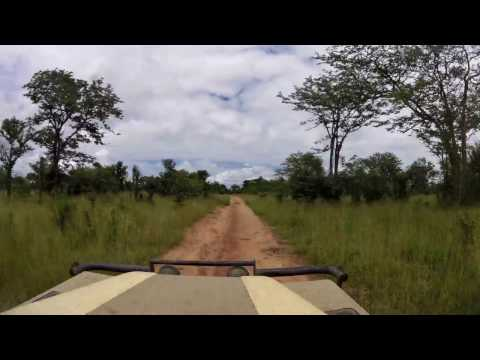 2017 Hwange National Park Timelapse from  Mandavu Dam to Main Camp