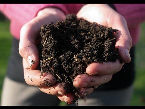แก้ใขปัญหาสารตกค้างในดิน(เกษตรแม็กซาโก้)คุยเฟื่องเรื่องเกษตร