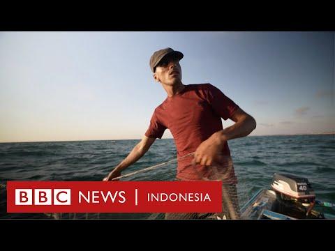 Pekerjaan berbahaya: Bertaruh nyawa mencari ikan di Jalur Gaza - BBC News Indonesia