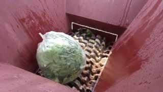 生ごみの破砕 強力破砕機 ライオンシュレッダー Food waste shredder thumbnail