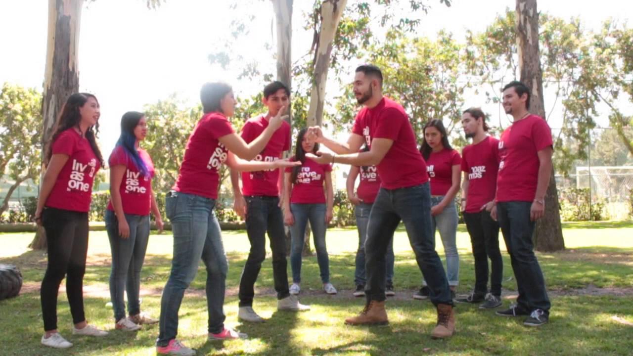 dinámica evolución integración de grupo youtube