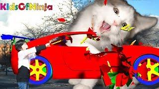 モンスター?!  猫が恐竜みたいにおもちゃを壊すよ!おばけごっこ