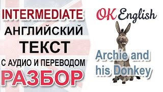 Archie and his Donkey - английский текст среднего уровня - разбор, перевод, английская грамматика