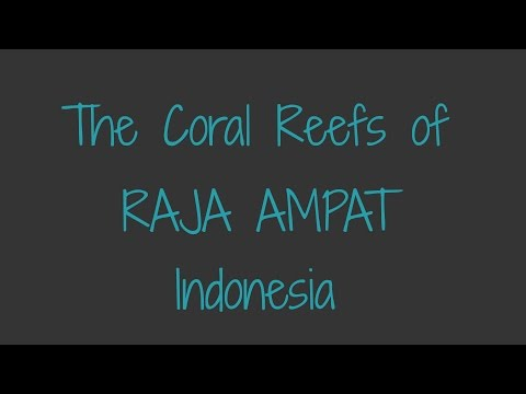 The Coral Reefs of Raja Ampat