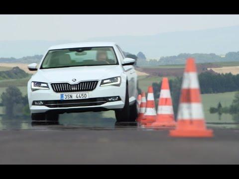 Skoda Superb 2.0 TSI: So viel Platz! - Die Tester | auto motor und sport
