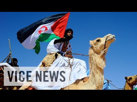 The Sahara's Forgotten War (Full Length)