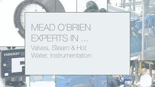 Mead O'Brien: Experts in Valves, Valve Automation, Steam & Hot Water Systems, Process Instruments