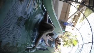 Souvenirs aquapark Atlantis Hotel palm Dubai with lahcen pakito