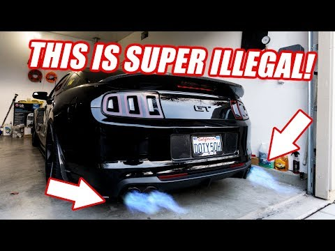 Are We Screwed? My Thoughts on the California AB 1824 Law! The TRUTH about $1000 FINE.
