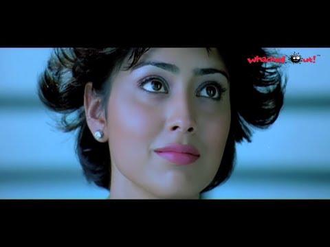 Mallanna Movie Scenes - Love Scene - Chiyaan Vikram & Shriya Saran