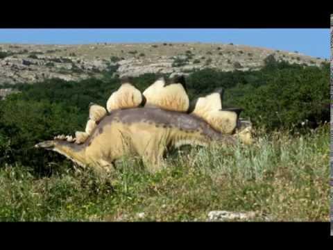 Природа Южного берега Крыма