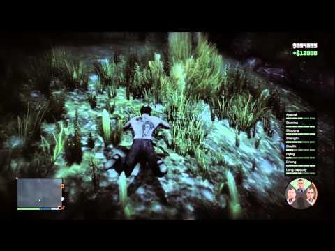 Infinite Cash Glitch Grand Theft Auto V Cheat - Attack of