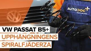 Montering Spiralfjädrar bak vänster höger VW PASSAT: videoinstruktioner