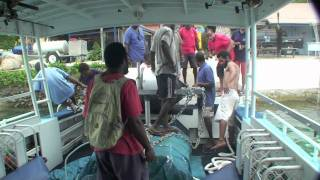 FAD Deployment, These structures  fishing in Port Vila Vanuatu