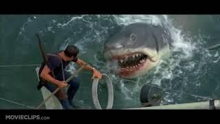 последний бой. Рой Шнайдер против акулы. ЧЕЛЮСТИ. JAWS