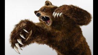 Охота на медведя с арбалетом на 150 метров