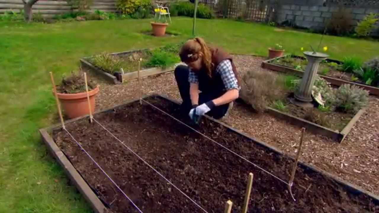 Le potager conseils de jardinage youtube for Conseil de jardinage