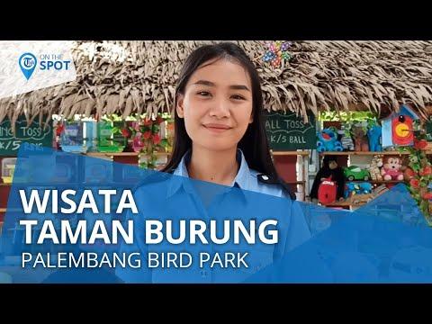 wiki-on-the-spot---palembang-bird-park,-taman-burung-dengan-1000-lebih-jenis-burung
