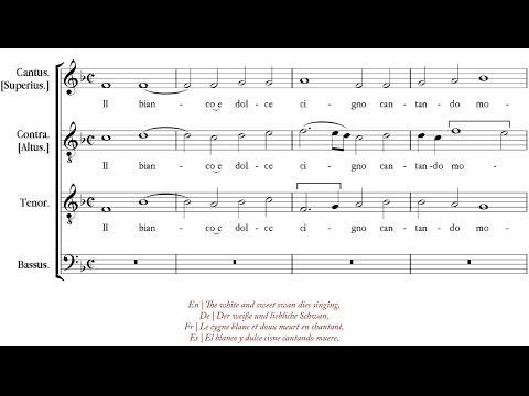 Arcadelt   Il bianco e dolce cigno [á 4; The Hilliard Ensemble]