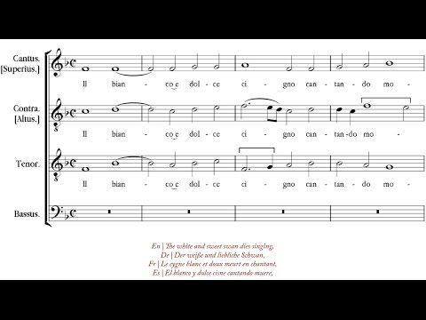 Arcadelt | Il bianco e dolce cigno [á 4; The Hilliard Ensemble]