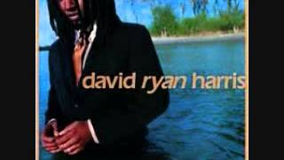 Watch David Ryan Harris King Karma video