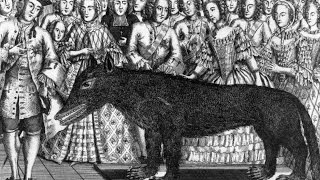 10 Historic Encounters With Deadly Beasts