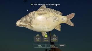 Русская рыбалка 4 оз Янтарное карпы призраки фарм russian fishing 4