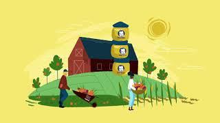 Building a More Sustainable Future   Nestlé USA
