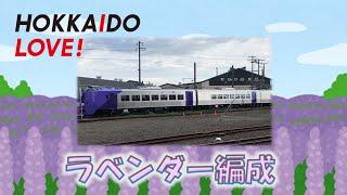 【新車】デビューの日を迎えたキハ261系ラベンダー編成 HOKKAIDO LOVE!