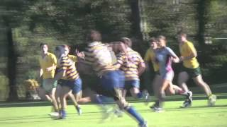 Marist College Ashgrove 2nd XV 2013