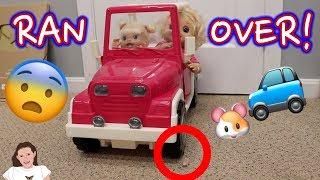 Baby Alive Emma Runs Over Class Pet! | Kelli Maple