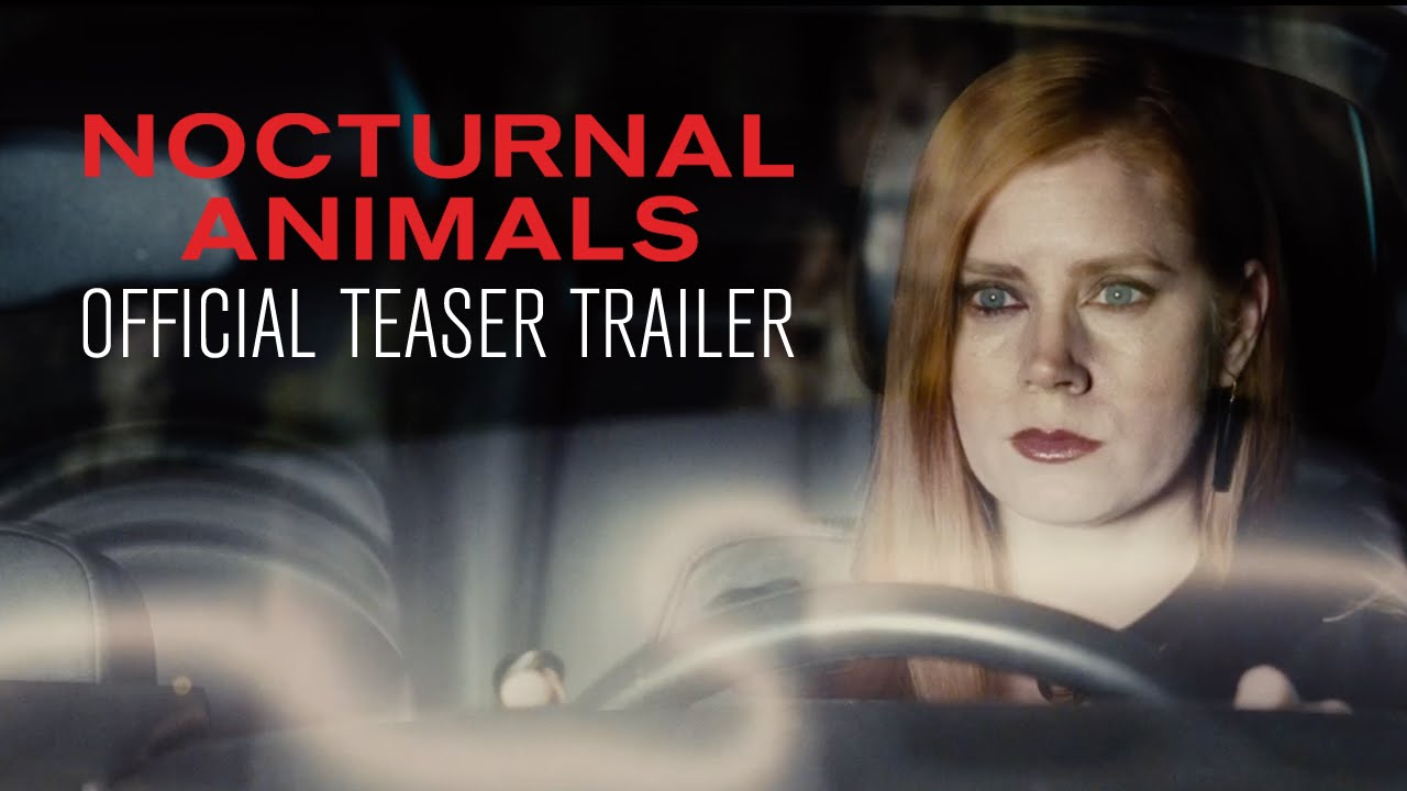 Youtube Nocturnal Animals Official Teaser Trailer In Select Theaters November 18 Youtube Youtube Nocturnal Animals Official Teaser Trailer In Select Theaters