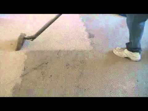 Carpet Cleaning Genie Steam Clean Youtube