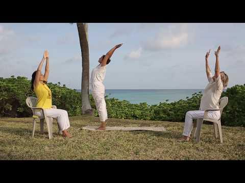 30 Minute Adaptive Chair Yoga Class