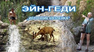 видео Кибуц Эйн-Геди