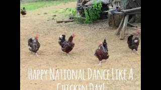 National Chicken Dance Day