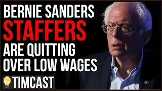Bernie Sanders Staff Demand $15 Minimum Wage, Some Quit Over Low Wages