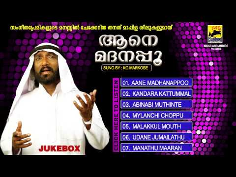 Mappilapattukal Malayalam Nonstop mappila songs | Aane Madanappoo | Old Mappila Songs Jukebox