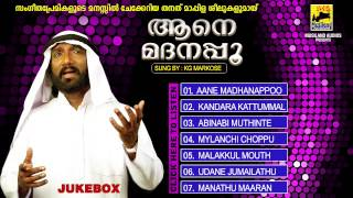 Mappilapattukal Malayalam Nonstop mappila songs | Aane Madanappoo | Old Mappila Songs Jukebox