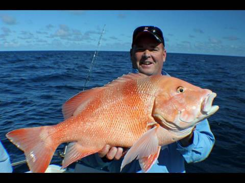 Mackay Fishing Charter!! Insane Three Day Trip!!