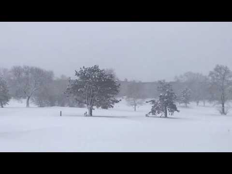 Chicago Area Spring Snow Storm April 14, 2019 - Northbrook IL USA - Permission To Use With Credit