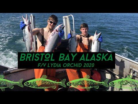 Bristol Bay 2020