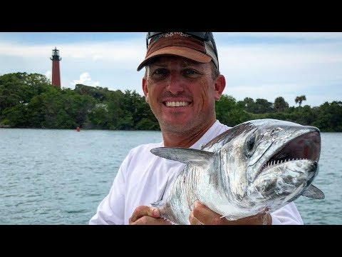 Kingfish {Catch Clean Cook} Ginger Crusted Broiled King Mackerel