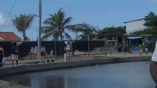 La Tercera es la Vencida - Pesca con Mosca- Los Roques/Venezuela