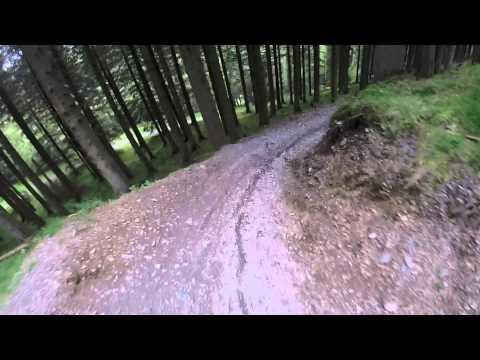 Whinlatter Altura trail, Keswick