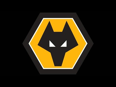 Bristol City vs Wolves MATCHDAY VLOG