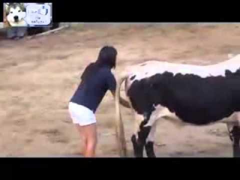 Девушка с быком занималась сексом онлайн